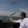 John feeding Black-headed Gulls (from ferry)-06032010-150757