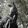 Central Park, NY-08262010-171015(f)