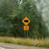 NY, Hwy 219-08202012-092925(f)
