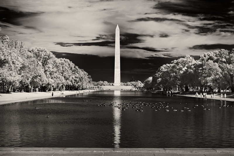 National Mall Reflecting Pool and Washington Monument