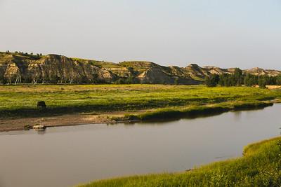 Theodore Roosevelt - National Park