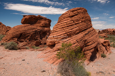 Beehives in the Valley of Fire, Nevada