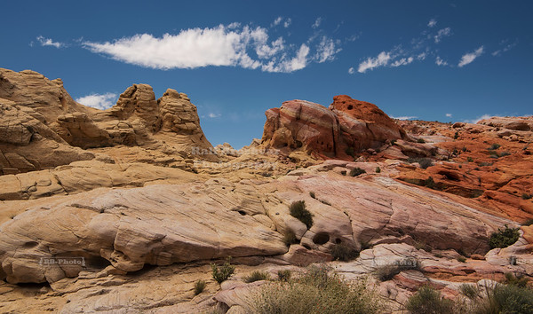 Pastel Canyon at Valley of Fire State Parl