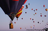 in a sky of balloons