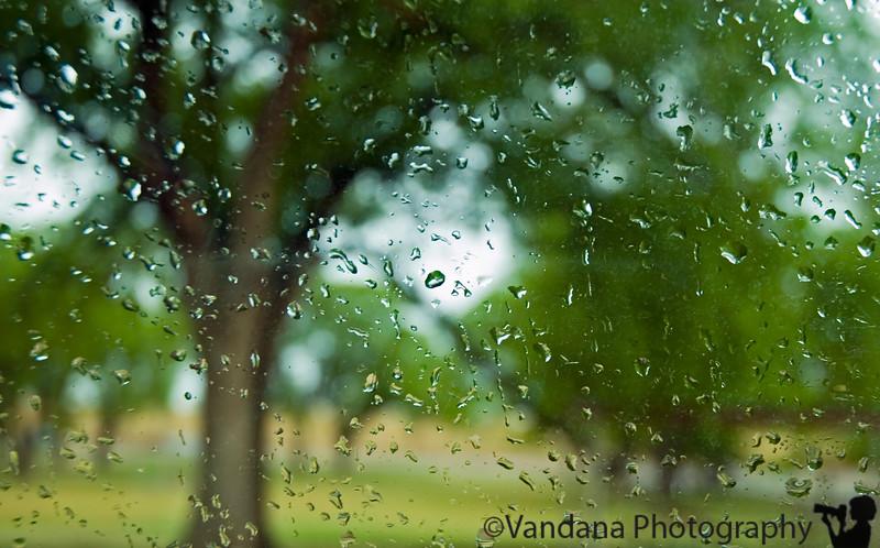There will come soft rains, Clovis, New Mexico