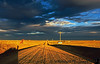 the long and winding road, Clovis, New Mexico