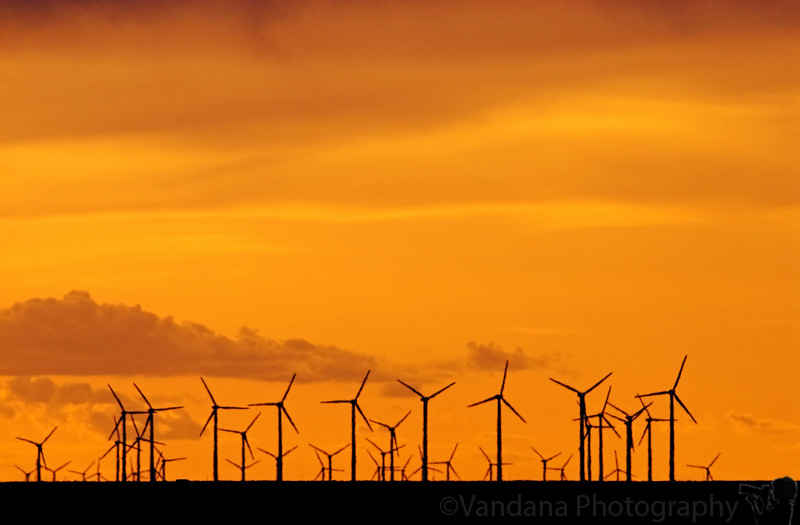 May 28, 2007 - Windmills going about their business at sunset, Elida, NM