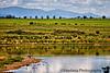 McAllister lake, Las Vegas National Wildlife refuge, NM