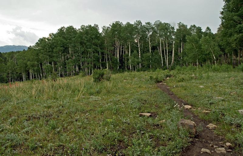 On the Jack's Creek trail, Pecos Wilderness