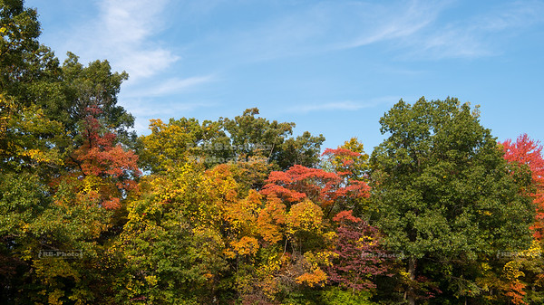 Fall colors along the Ledges Trail in Cuyahoga National Park, Ohio, USA