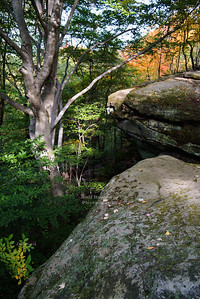 The ledges in the Boston Heights area of Cuyahoga Valley National Park, Ohio, USA