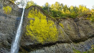 Latourell Falls in Oregon
