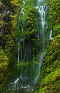 © Joseph Dougherty. All rights reserved.  Small waterfall in the central Cascades.