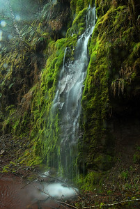 © Joseph Dougherty. All rights reserved.  Small rain-induced waterfall in the central Cascades.
