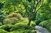 High Dynamic Range shot combining 5 original images.  Japanese Garden, Washington Park, Portland, Oregon, USA.<br /> <br /> Nikon 35mm f/1.8 DX prime lens.