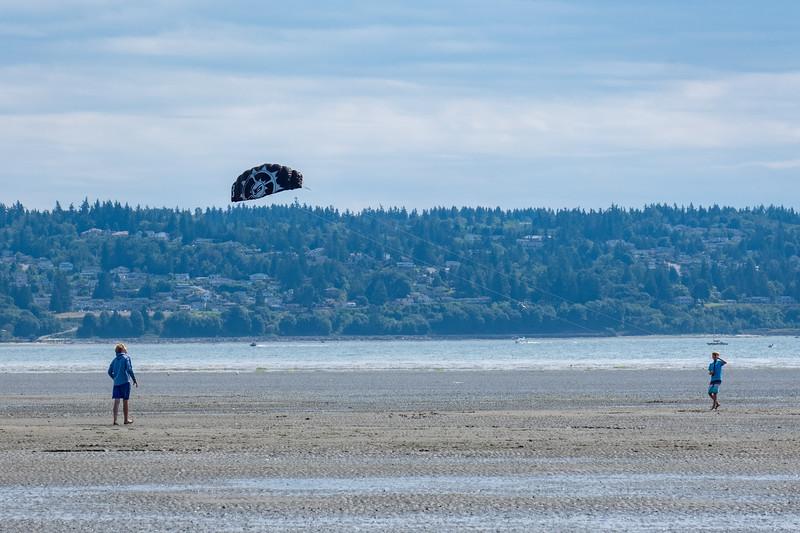 Jetty Island in Everett, WA