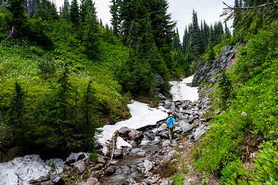 Mount Rainier National Park in Washington