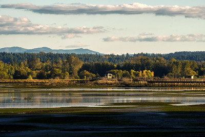 Billy Frank Jr. Nisqually National Wildlife Refuge in Olympia, WA