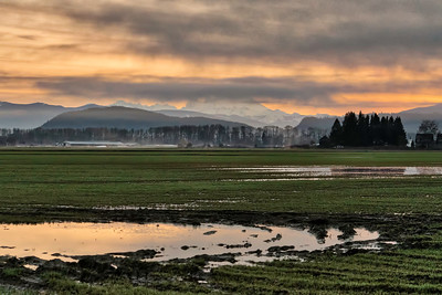 Skagit Wildlife Area in Washington