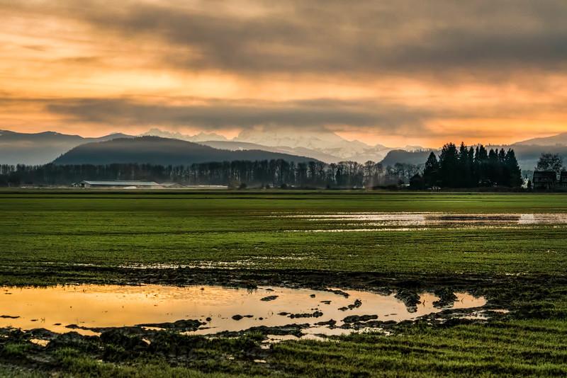 Skagit Wildlife Area in Washington