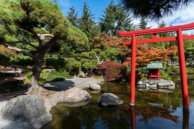 The Pagoda @ Point Defiance Park in Tacoma, WA