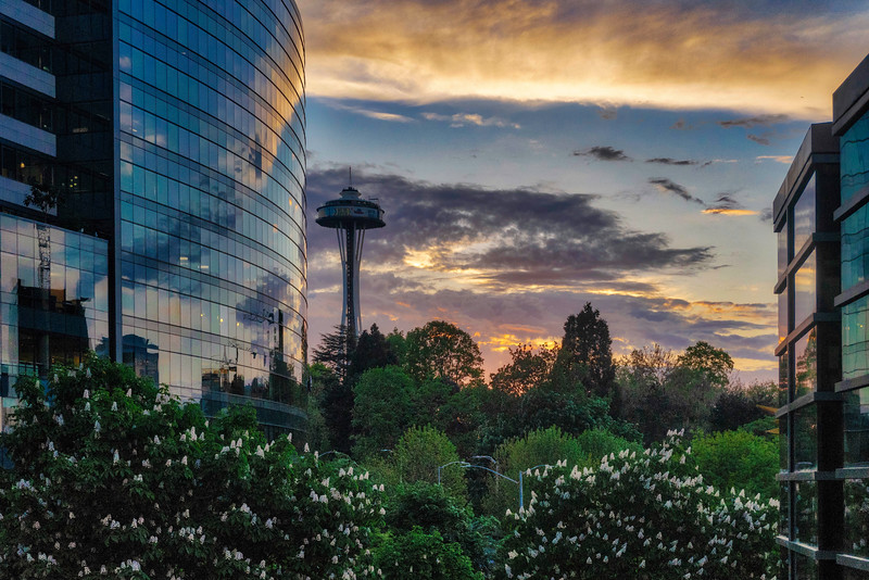 Colorful Spring Sunset in Queen Anne, Seattle