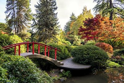 Fall Color in Kubota Garden