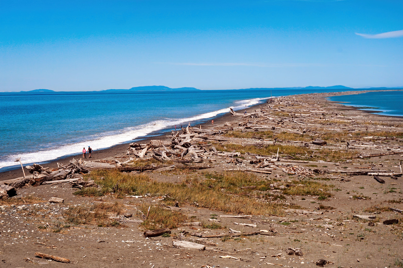 Dungeness Spit in Washington State