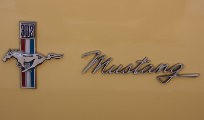 Mustang 302
