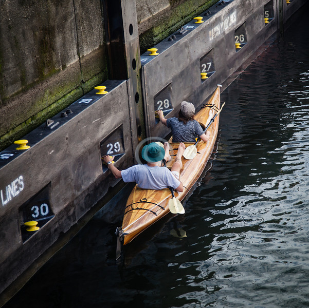 Noticed at Ballard Locks<br /> <br /> ~ Image by Martin McKenzie, all rights reserved ~