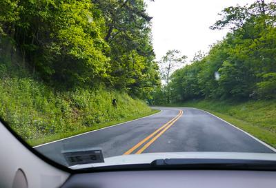 Skyline Drive/Blue Ridge Parkway