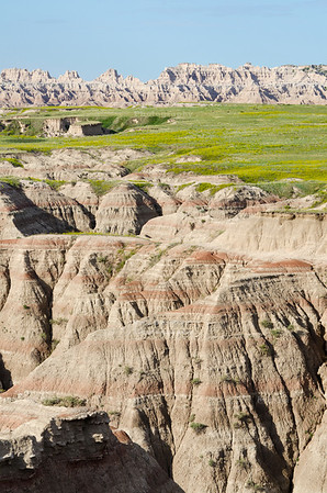 Blooming badlands as seen from the Big Badlands Overlook at the northeast entrance of Badlands National Park, South Dakota, USA