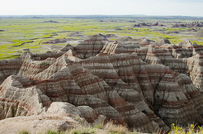 Blooming badlands seen from the Big Badlands Overlook at the northeast entrance of Badlands National Park, South Dakota, USA