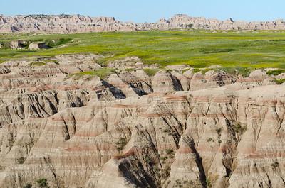 Blooming badlands seen from the Big Badlands Overlook at the northeast entrance of Badlands National Park, South Dakota, USA