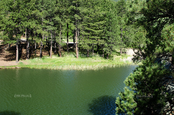 Center Lake, a little gem hidden in Custer State Park, Black Hills, South Dakota, USA