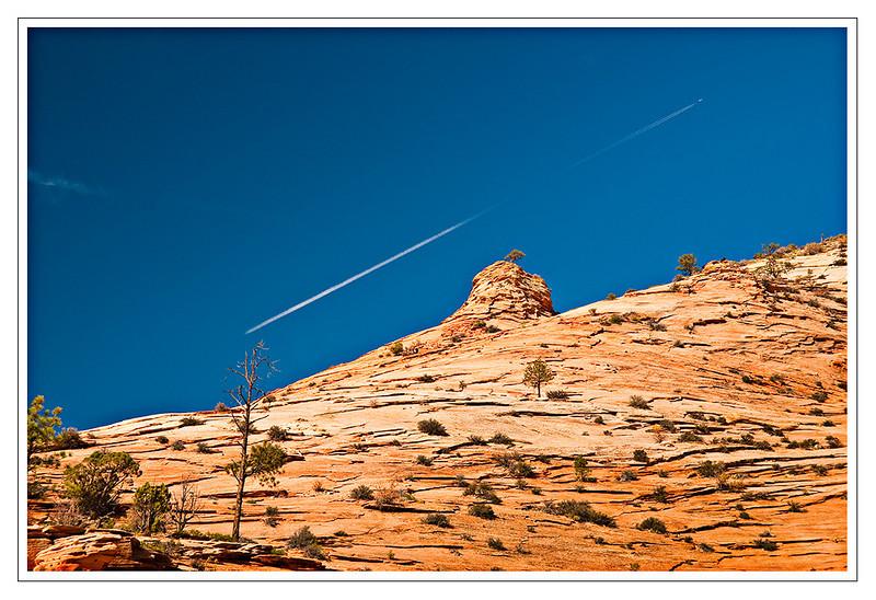 Zion National Park, Southwest Utah,USA Photo-id Utah-0020