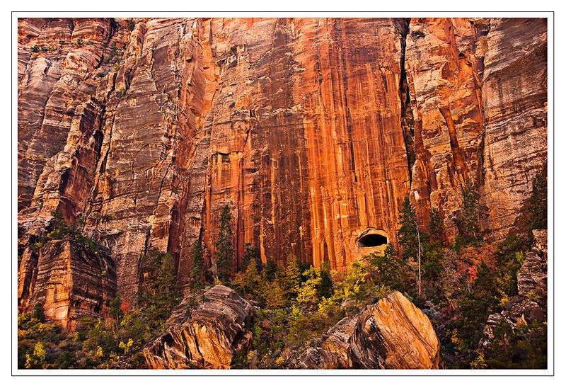 Zion National Park, Southwest Utah,USA Photo-id Utah-0033