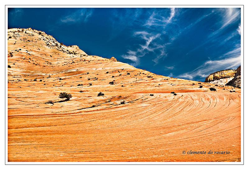 Zion National Park, Southwest Utah,USA Photo-id Utah-0022