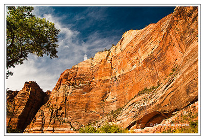 Zion Canyon, Zion National Park, Utah,USA