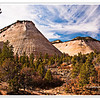 Checkerboard Mesa, Zion National Park,Utah USA - Photo-id Utah-0003