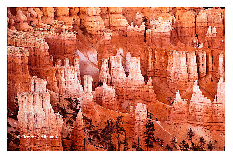 Bryce Canyon National Park, Southwest Utah, USA