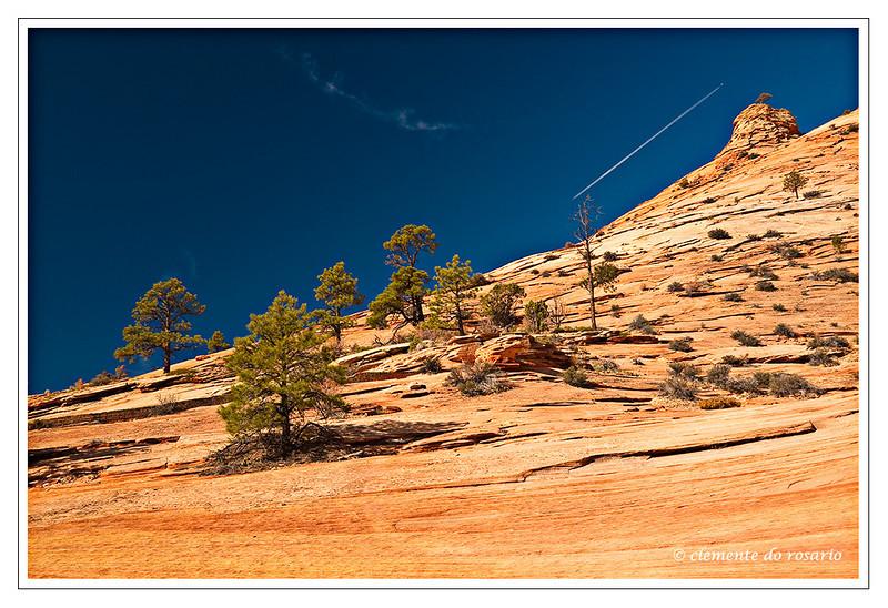 Zion National Park, Southwest Utah,USA Photo-id Utah-0019