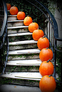 Pumpkins, Savannah Georgia