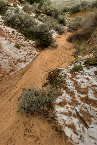 © Joseph Dougherty.  All rights reserved.    Light snow in sandy arroyo.