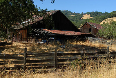 Old wooden barn and fence in tall dry grass.
