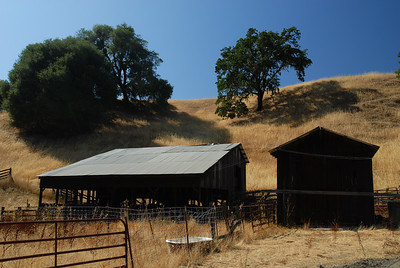 Old barns and sheds in dry field of brown grass, with old wooden fence.