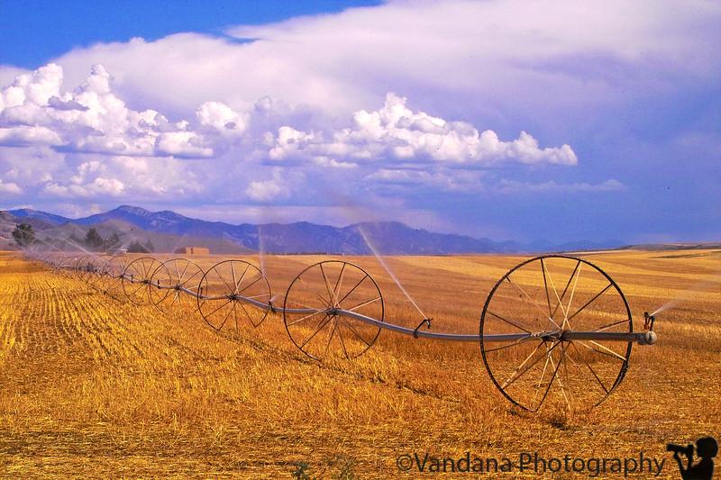 Irrigation on a farm in Idaho