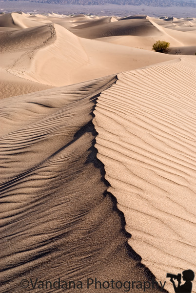 Sand Dunes At Death Valley National Park, California