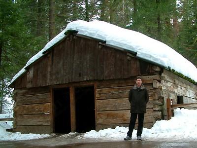 Sequoia park - La vecchia capanna dei taglialegna