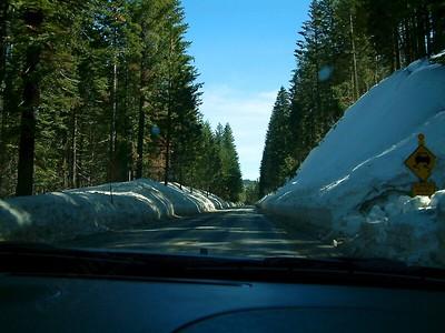 Yosemite - La prima neve del parco 2004-03-04 at 21-36-08